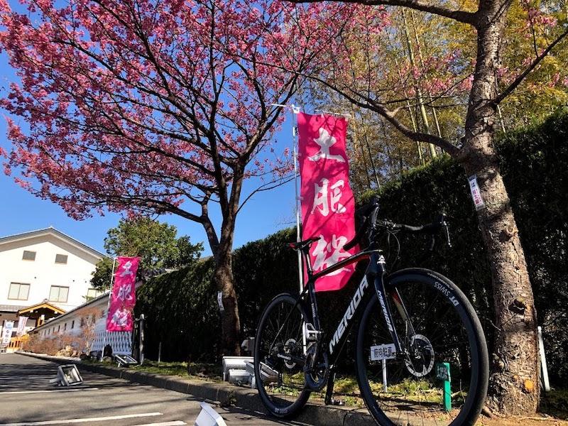 西伊豆を巡るeバイクガイドツアー