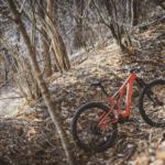 スペシャライズドがeロードバイク、eMTBの2021ニューカラーをリリース