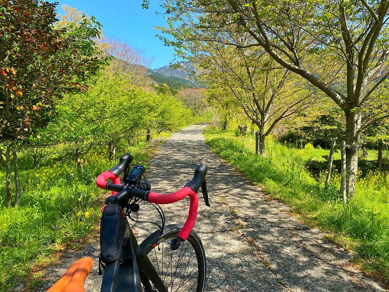 ヤビツ峠の田舎道